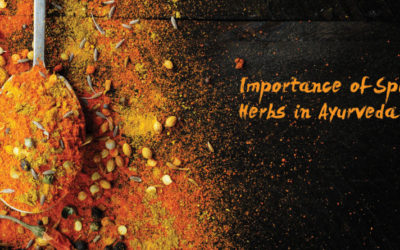 Importance of Ayurvedic Spices as Herbs
